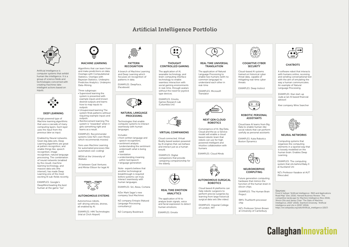 Callaghan Innovation AI portfolio